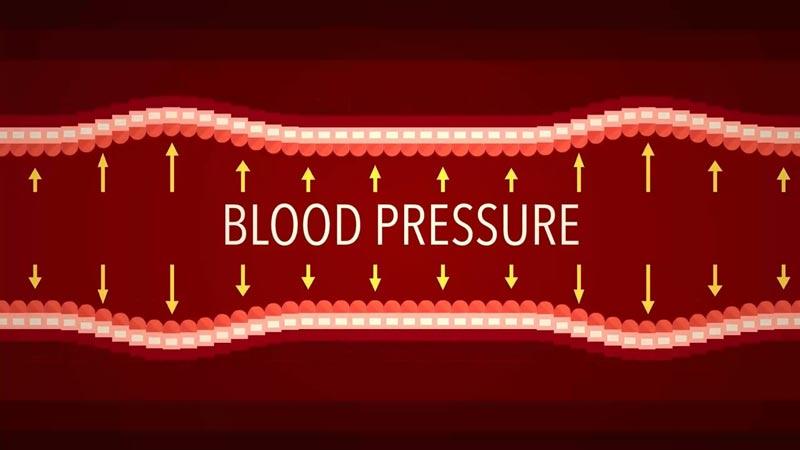 عملکرد فشار خون
