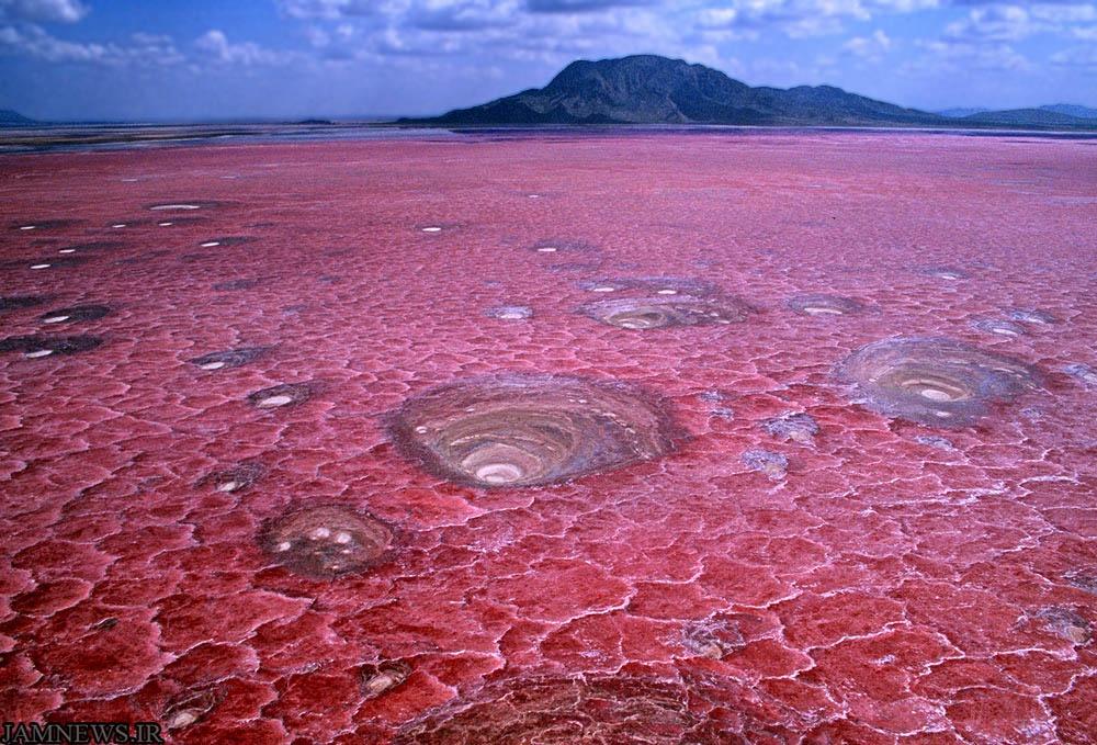 دریاچه ی ناترون، تانزانیا