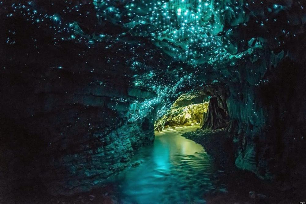 رقص پروانه ها در غار، نیوزیلند