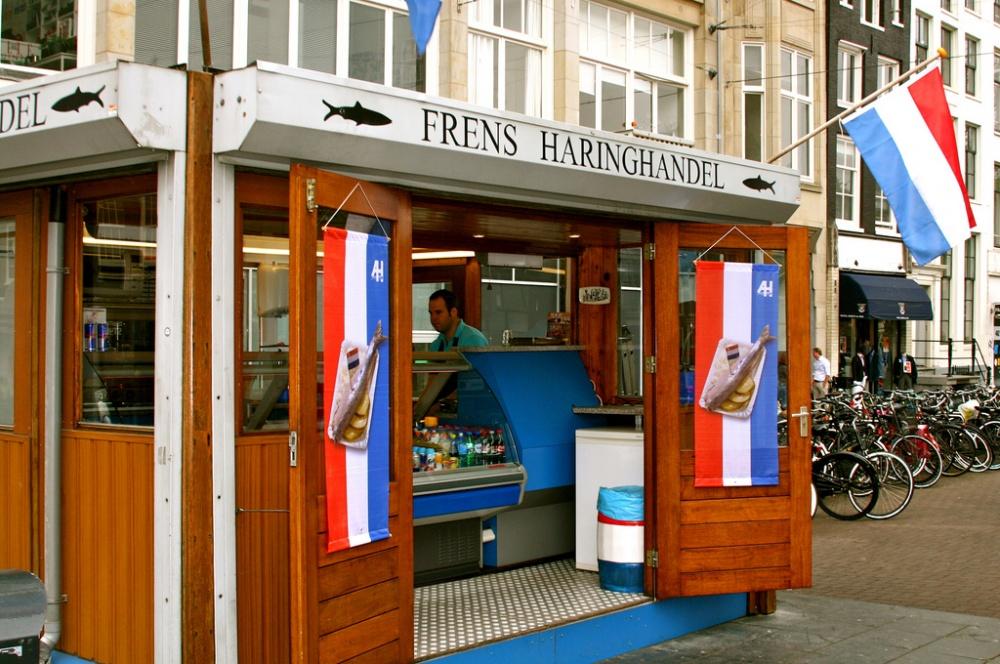 از این جا می توانید گوش ماهی هلندی بخرید