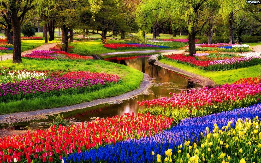 کوکنهوف، که به عنوان باغ اروپا هم شناخته می شود