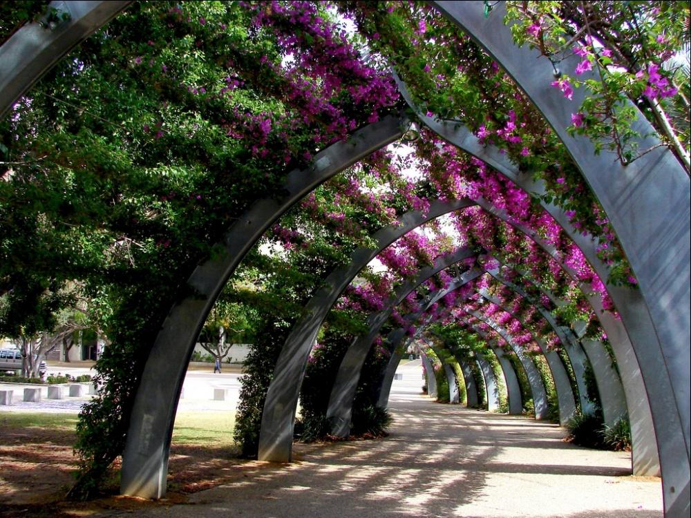 بریزبن، استرالیا