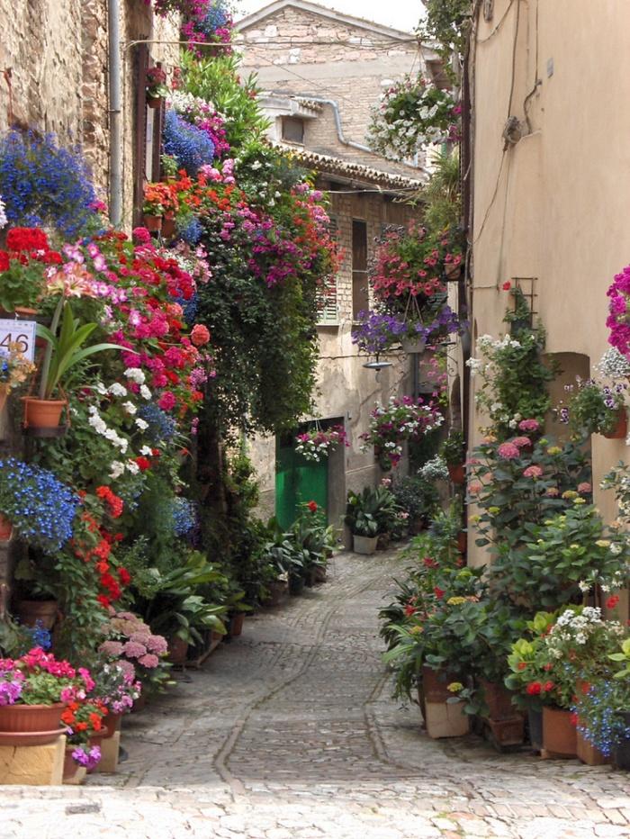 اسپلو،ایتالیا