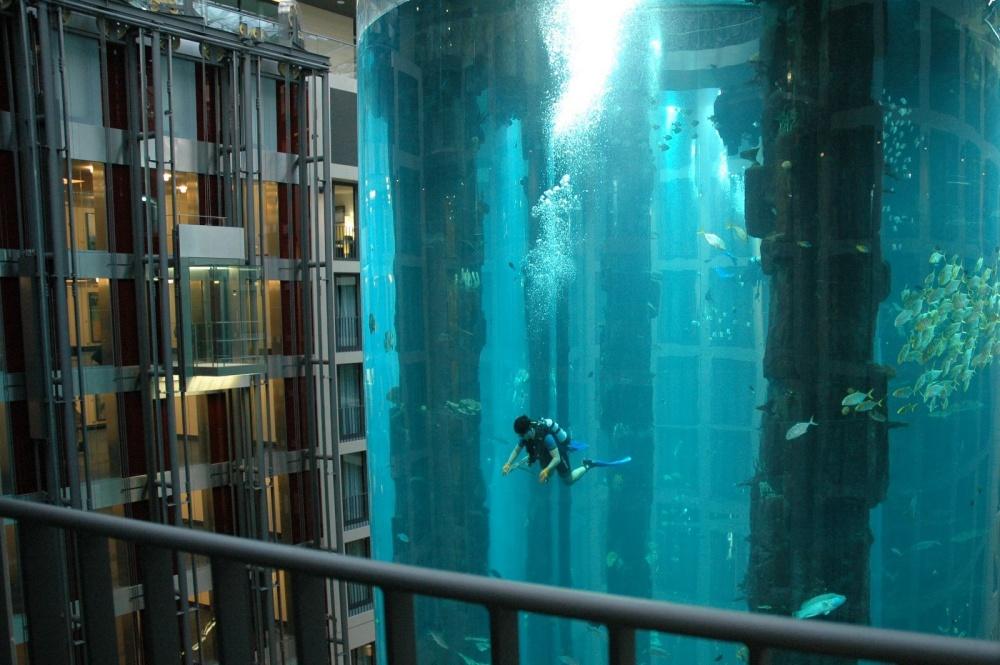آکواریومی در امتداد یک آسانسور