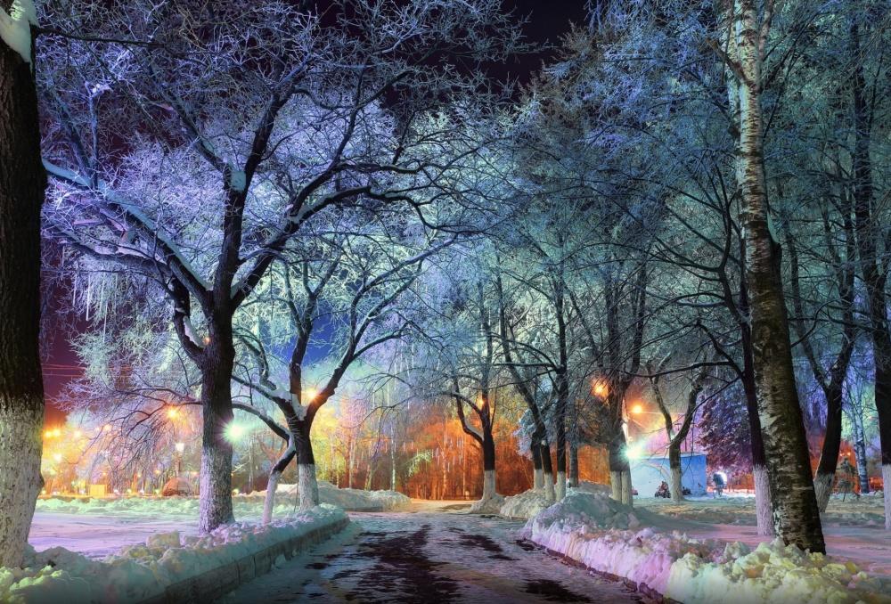پارک شهری در ولوگدا،روسیه