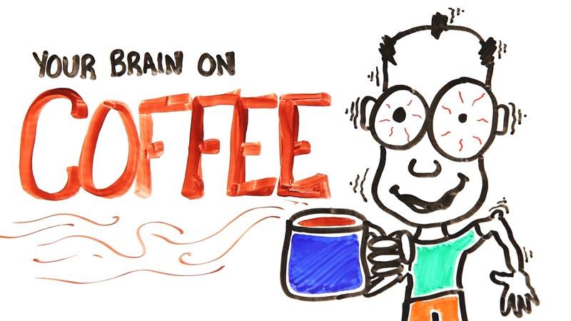 تاثیر قهوه بر مغز