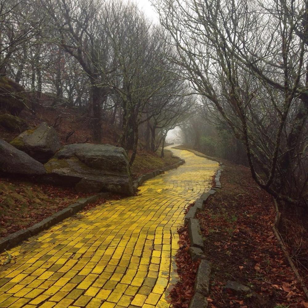 جادهی زرد آجری در ویرانههای پارک
