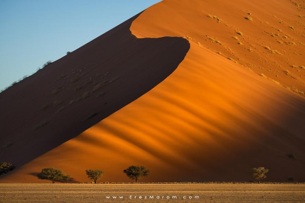 طلوع آفتاب در تلماسههای شنی بزرگ صحرای نامیب.