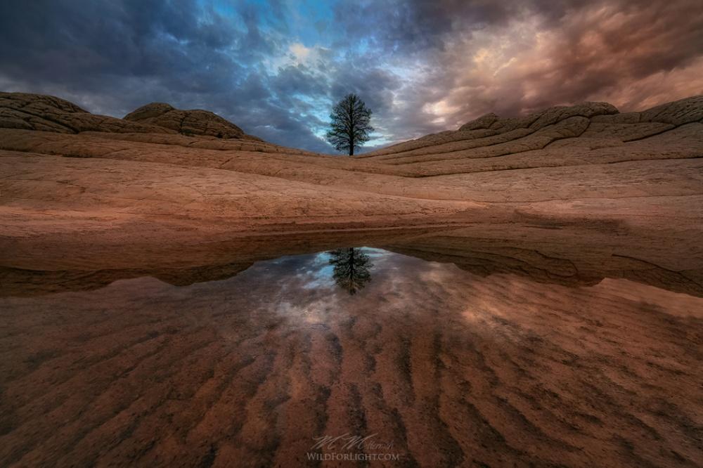دریاچهای در آریزونا، آمریکا