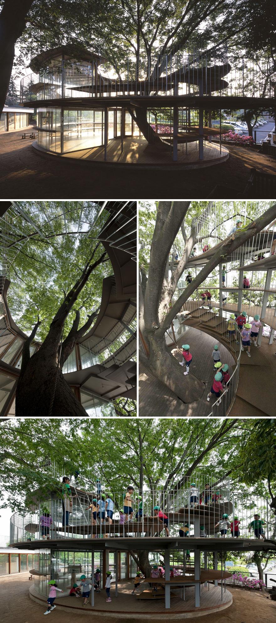 مهد کودکی در ژاپن که پیرامون یک درخت ساخته شده.
