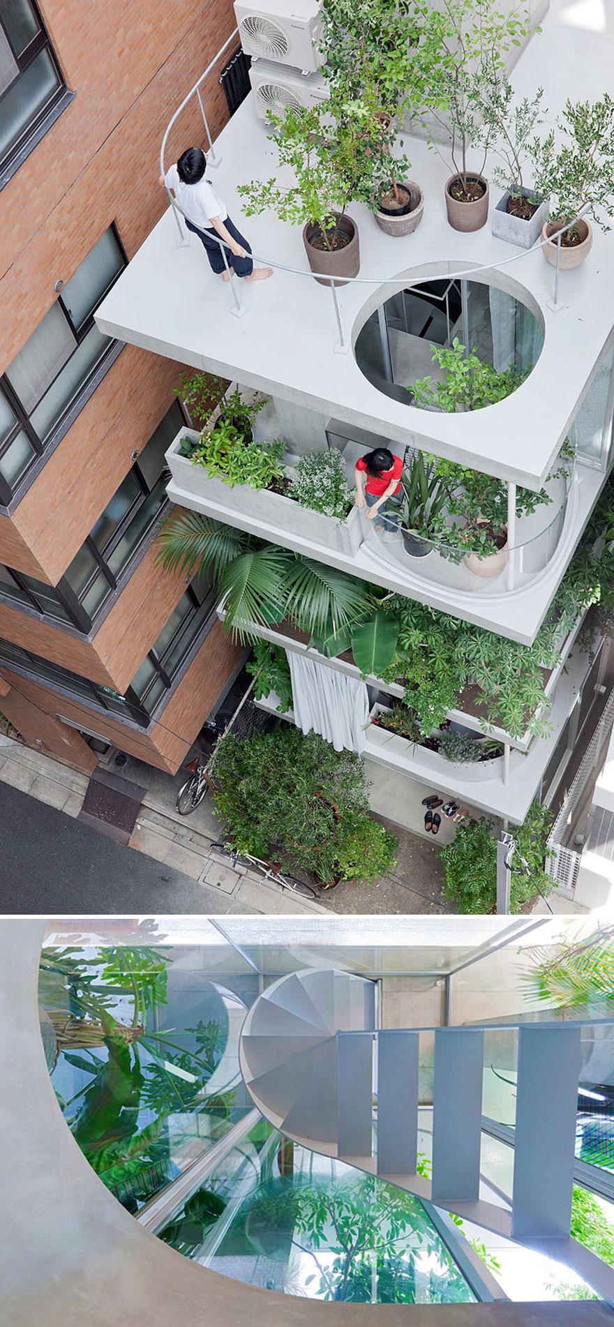 خانه و باغ در توکیو.