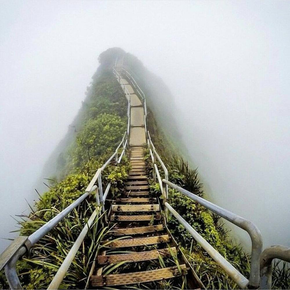 «پلهپله تا بهشت» در هاوایی که روزگاری معروف بوده