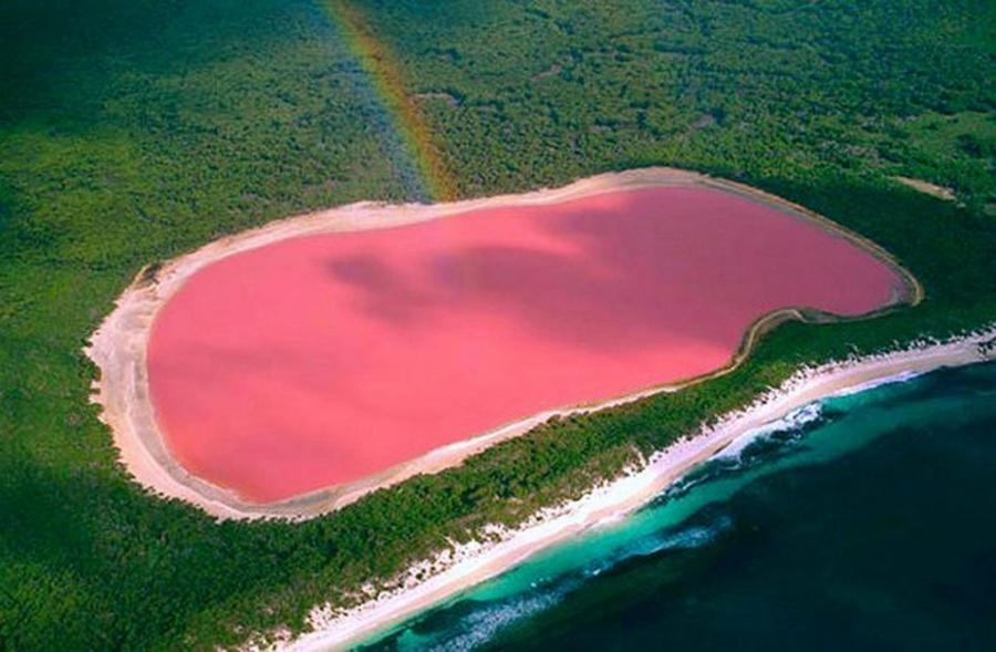 دریاچه صورتیرنگ هیلیه، استرالیا