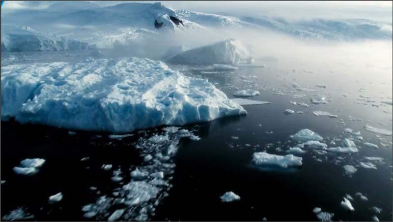 تاثیرات گرمایش جهانی