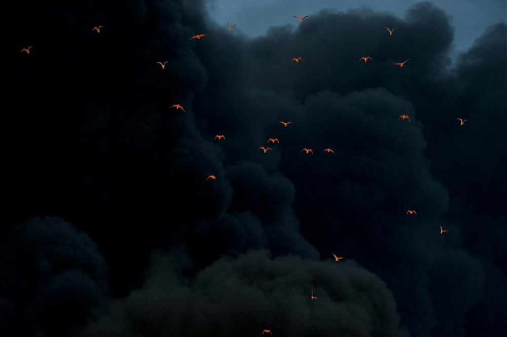 آتش شعلهور