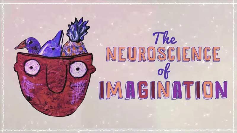 خیالپردازی از منظر علم عصبشناسی