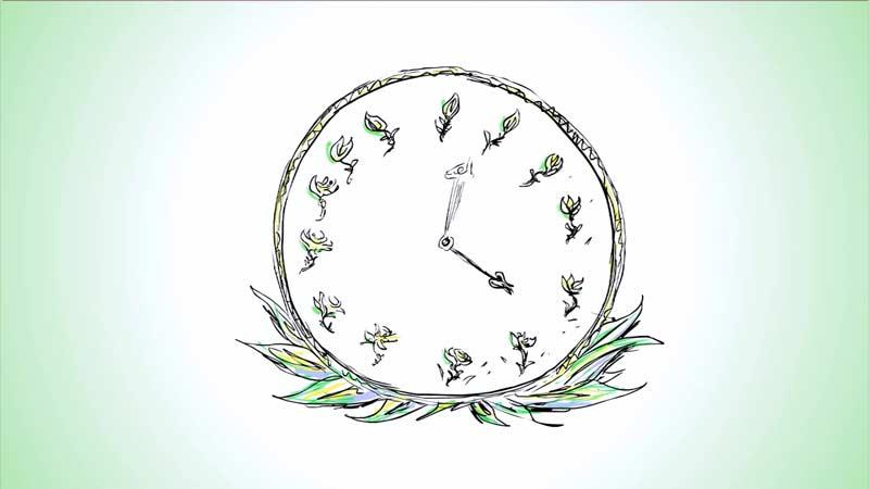 گیاهان چطور زمان را تشخیص میدهند؟