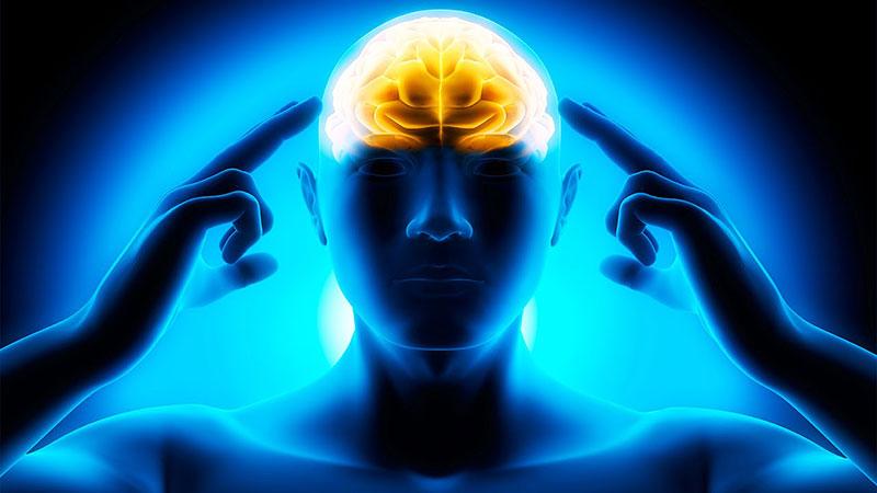 حافظه در کاهش افکار منفی به ما کمک میکند