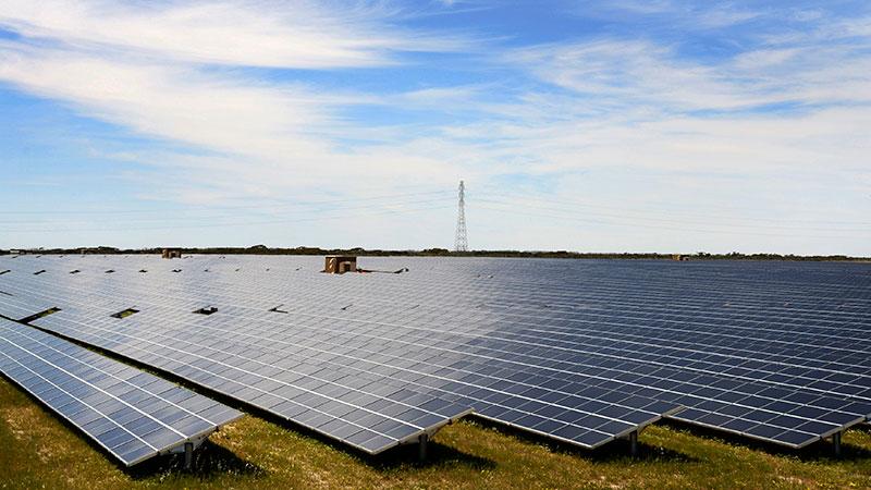 ساخت بزرگترین مزرعه خورشیدی جهان در استرالیا