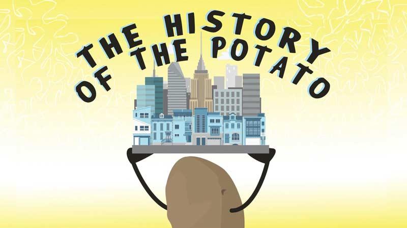 تاریخ از نگاه سیبزمینی