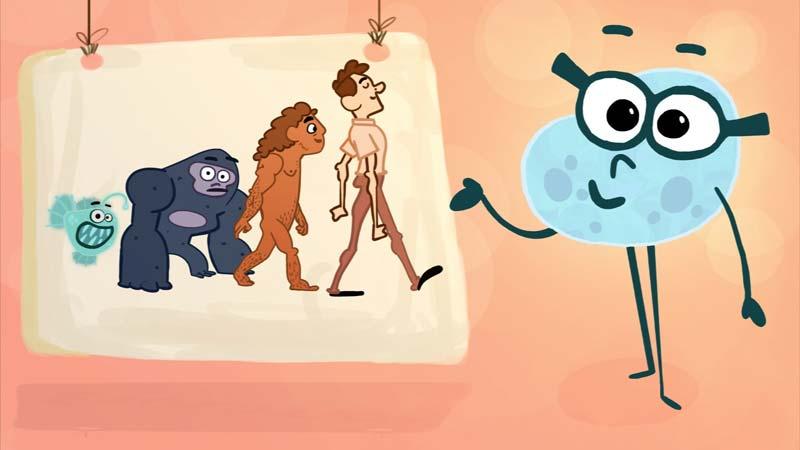 تصورات و برداشتهای نادرست دربارهی تکامل
